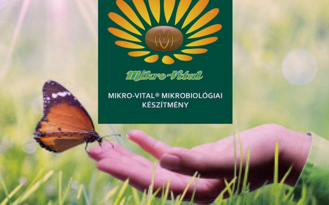 A Mikro-Vital ősszel is bizonyít