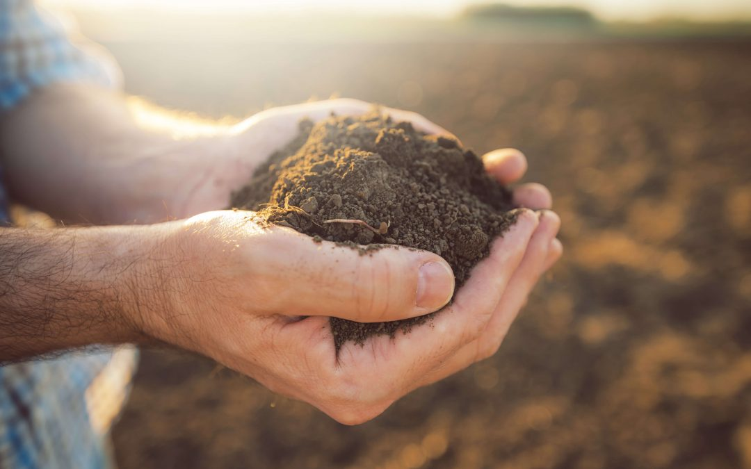 A talajvédelem tíz szabálya